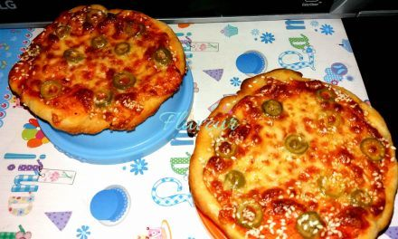 MINI PIZZA CU MOZZARELLA SI SUSAN